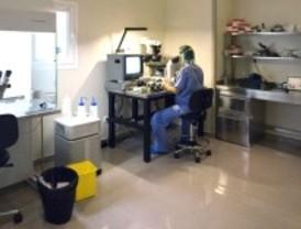 2.000 parejas fueron aayudados a ser padres gracias a la fecundación 'in vitro' en 2010