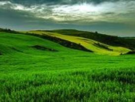 Objetivo: reducir gases invernadero en agricultura