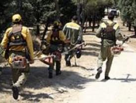 La Comunidad reforzará la actuación de los agentes forestales en la Cañada Real