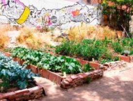 Crean un huerto urbano en Moratalaz