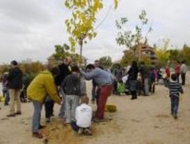 Un colegio de Boadilla celebra una fiesta de medioambiente