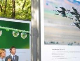 Arte '100% Natural' en el Paseo del Prado