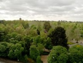 El parque del Retiro se implica con la naturaleza