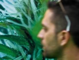 La Cubierta de Leganés acoge la séptima edición de Expocannabis