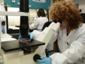 Resistencia a antibióticos en bacterias humanas y animales