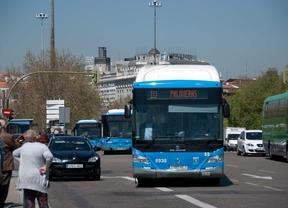 Ocho líneas de autobuses cambiarán su trayecto por las fiestas de La Paloma