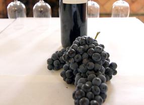 Primera ruta del vino, en Valdemoro