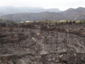 Los bomberos dan por controlado el incendio que ha quemado más de 3.000 hectáreas en Rasquera