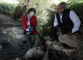 La nutria regresa a los ríos madrileños tras décadas de ausencia