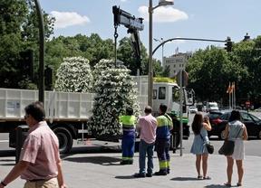 El Ayuntamiento gastó 28.000 euros en vallas y señalización para la proclamación real