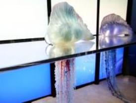 Los animales de Faunia enseñan a sus visitantes a usar la energía necesaria