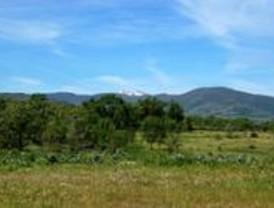 El PSOE pide a la Comunidad inversiones medioambientales para los municipios