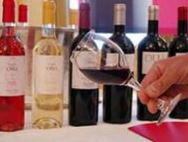 La Cámara forma a un selecto grupo de profesionales del vino