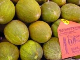 Degustación gratuita de melones en Villaconejos