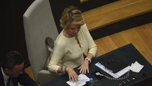 El PP emite en el Pleno imágenes de escraches a miembros de su partido y pregunta a Carmena su opinión