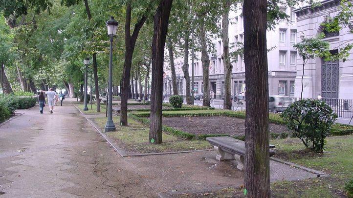 Ecologistas pide dejar de usar glifosato en zonas ajardinadas como el paseo del Prado