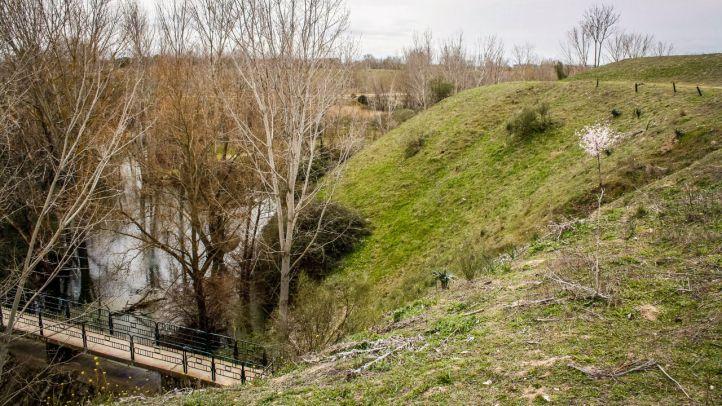 Laguna del arroyo Meaques