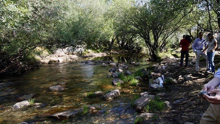 Los madrileños participarán en la elaboración del Plan Rector del Parque de Guadarrama