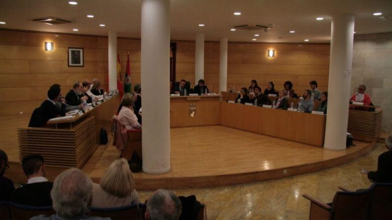 Pleno Ayuntamiento de Coslada