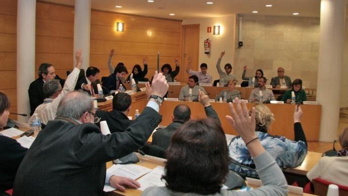 Pleno en el ayuntamiento de Coslada