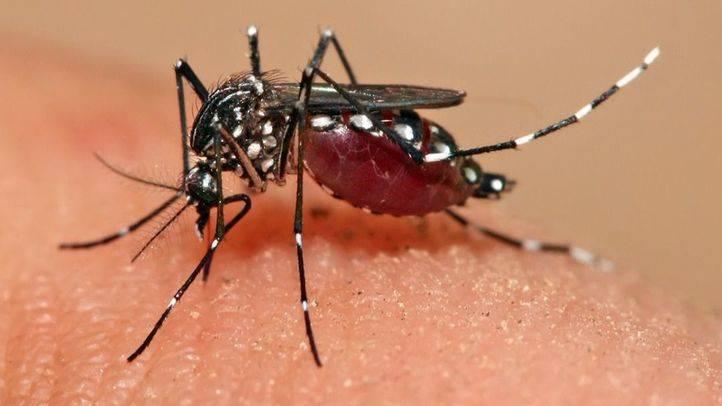 Sanidad eleva a 23 los casos de Zika en la región