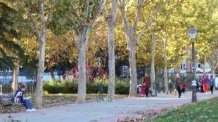 El suceso ha tenido lugar en un conocido parque de Carabanchel.