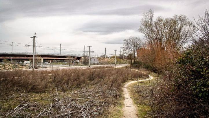 Queda desierta la subasta de los terrenos de Defensa en la zona de Colonia Jardín