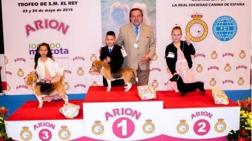 La exposición internacional canina acoge más de 4.000 ejemplares