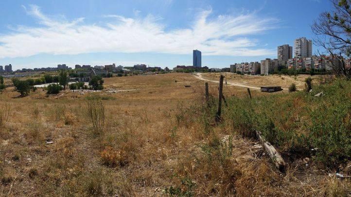 Visita a los terrenos donde se desarrollar� la operaci�n 'Castellana Norte'. (archivo)