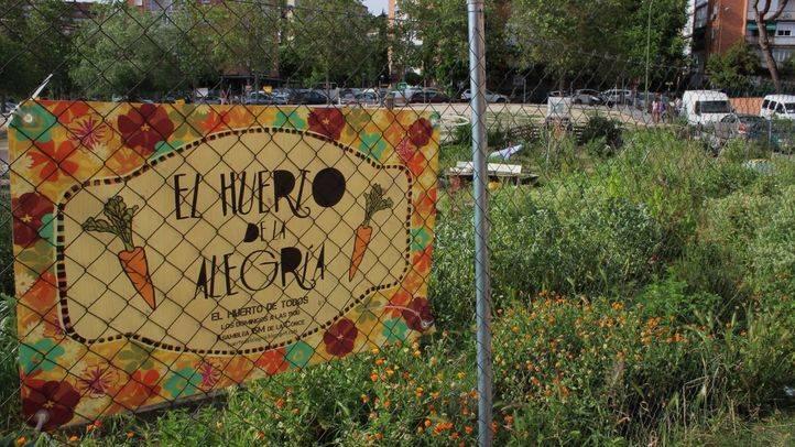 Huerto en el barrio de San Pascual