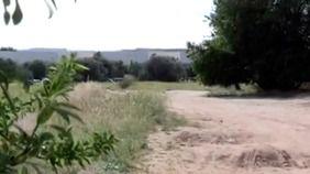 Olivar de Parla donde fueron encontrados unos restos humanos en dos bolsas de deporte.