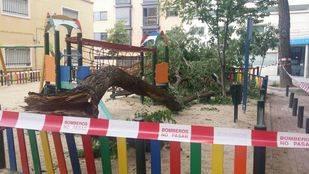 Un árbol se desploma sobre un parque de Arganzuela