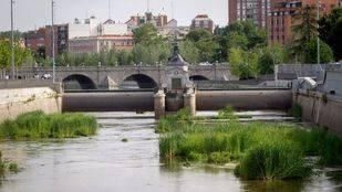 El Ayuntamiento impulsa el plan de Ecologistas para renaturalizar el Manzanares