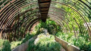 En la �poca en que era propietario de la Quinta el marqu�s de Bedmar vend�an los plantones de flores ornamentales, por eso la gran cantidad de macetas encontradas.