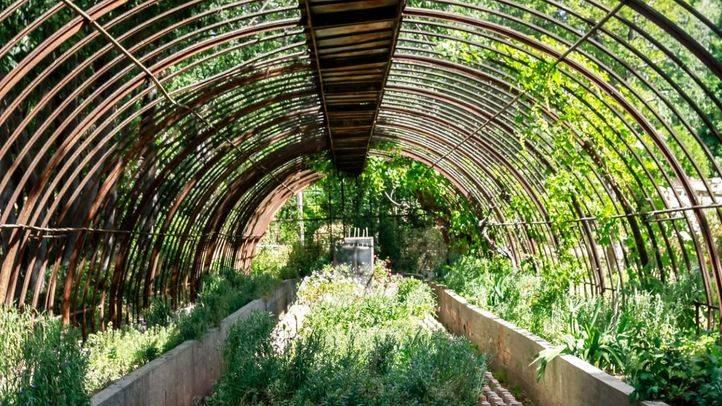 El futuro de Torre Arias: jardines históricos y huertos urbanos