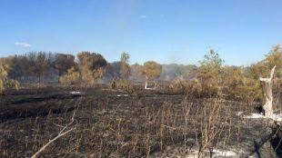 Arden 12 hectáreas de pasto en un incendio entre Madrid y Alcorcón