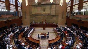 La oposición reclamará un Consejo de la Juventud