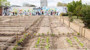 Huertos ecológicos y de integración a un paso del centro de Madrid