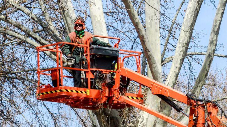 Sindicatos y vecinos piden aumentar la plantilla para paliar la falta de mantenimiento de zonas verdes