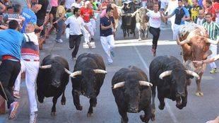 400 personas velarán por la seguridad de los encierros de San Sebastián de los Reyes
