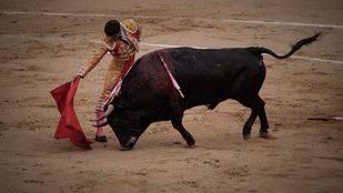 Madrid, la segunda comunidad que más corridas de toros celebra