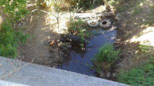 Cauce del arroyo del Molino de la Presa a su paso por el municipio Pelayos de la Presa.