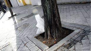 Suciedad en las calles de Madrid (Archivo)