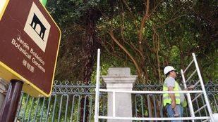 Obras de restauración del cerramiento histórico del Real Jardín Botánico de Madrid cofinanciadas con el 1,5% Cultural del Estado y por el CSIC.
