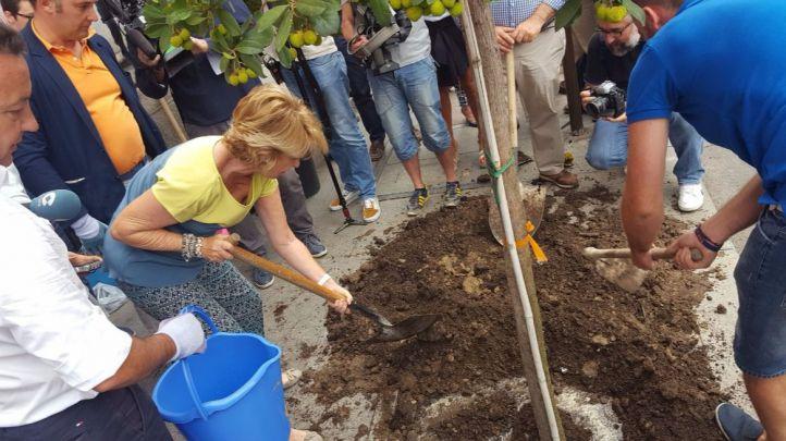 Esperanza Aguirre planta un madro�o en la calle Mayor