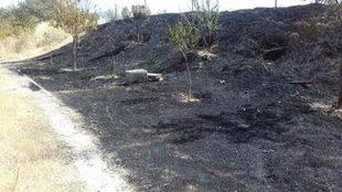 Incendio en el parque Manolito Gafotas