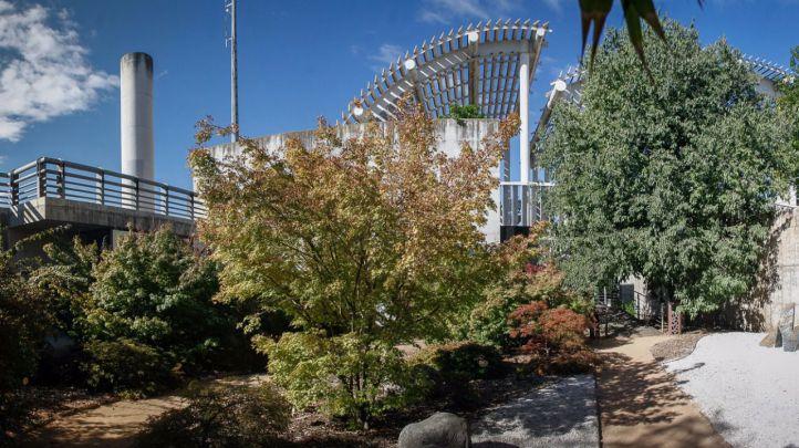 El corazón sostenible del Parque Juan Carlos I