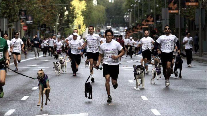 La carrera solidaria Perrotón vuelve este domingo para promover la adopción de animales