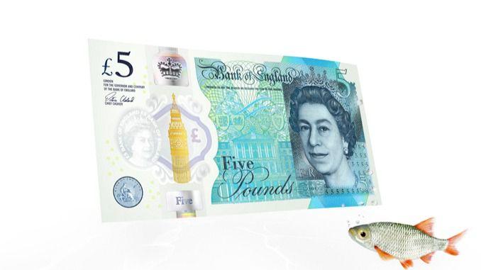 Cómo es el nuevo billete de plástico de cinco libras