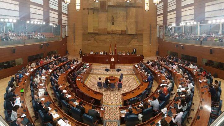 La Asamblea pide a Dancausa medidas urgentes para disminuir la criminalidad